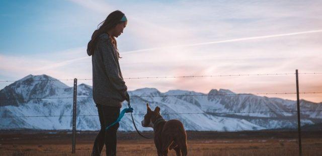 Educazione: come abituare il tuo cane al guinzaglio